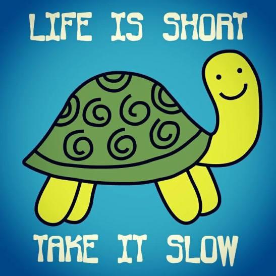 slowdown-sunday-2